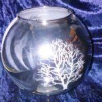 Vase boule bi face Ag
